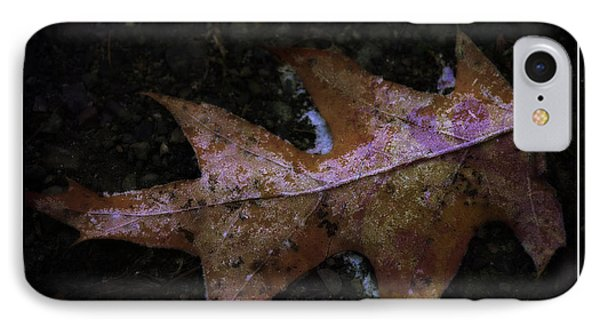IPhone Case featuring the photograph Frosted Oak by Tikvah's Hope