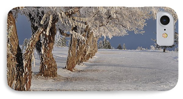IPhone Case featuring the photograph Frosted Trees by Fran Riley