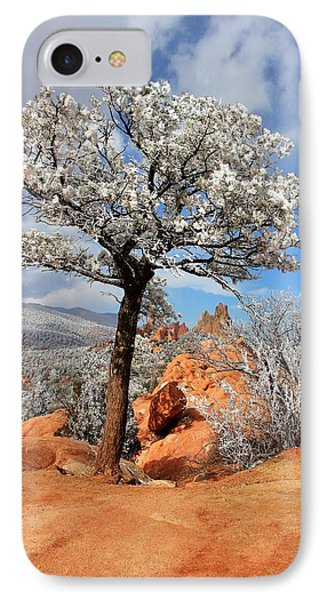 Frosted Wonderland 3 Phone Case by Diane Alexander