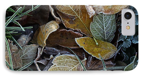 Frosty Autumn Leaves IPhone Case by Ellen Tully