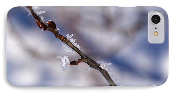 Frosty Buds IPhone Case by Sheila Byers