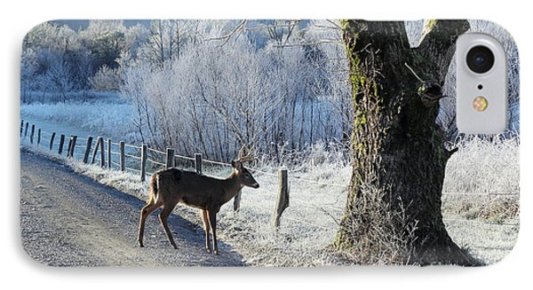 Frosty Cades Cove II IPhone Case