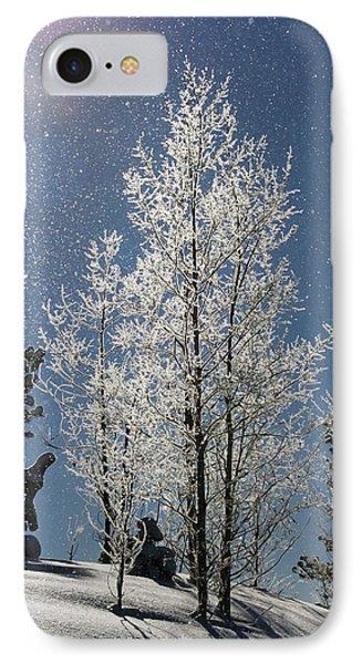 Frosty Colorado Aspen IPhone Case
