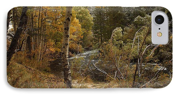 IPhone Case featuring the photograph Frosty Fall  Morning by Duncan Selby