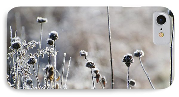Frosty Flowers IPhone Case