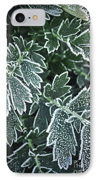 Frosty Leaves In Late Fall IPhone Case by Elena Elisseeva