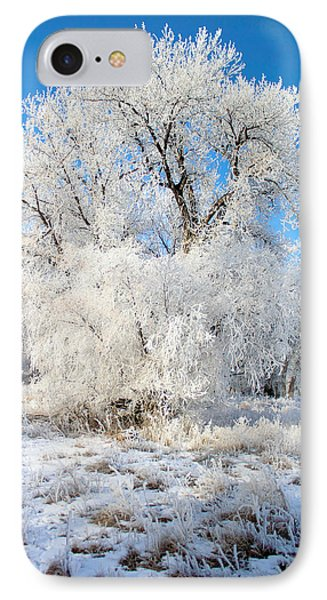 Frosty Morning Phone Case by Shane Bechler