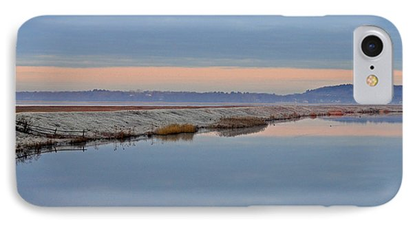 Frosty Morning Phone Case by Nancy Landry
