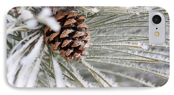 Frosty Norway Pine IPhone Case by Penny Meyers