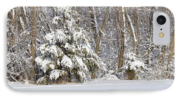 IPhone Case featuring the photograph Frosty Pine by Dacia Doroff