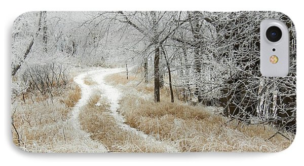 IPhone Case featuring the photograph Frosty Trail 2 by Penny Meyers