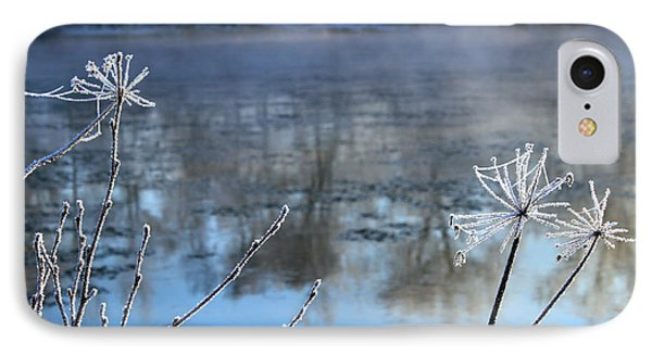 Frosty Webs And Weeds Phone Case by Hanne Lore Koehler