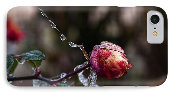 Froze Rose IPhone Case by Mark Alder