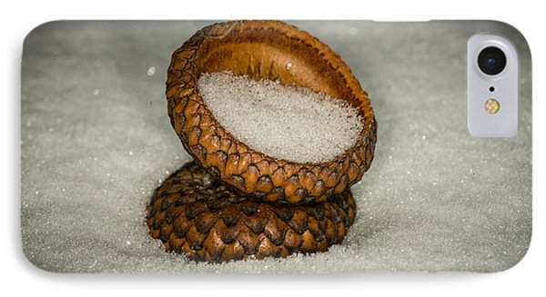 Frozen Acorn Cupule IPhone Case by Paul Freidlund