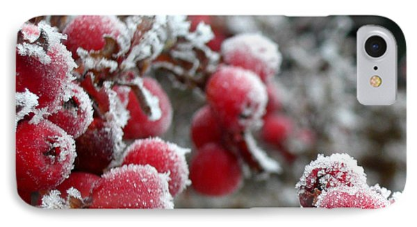 IPhone Case featuring the photograph Frozen Crimson Close Up by Heidi Manly