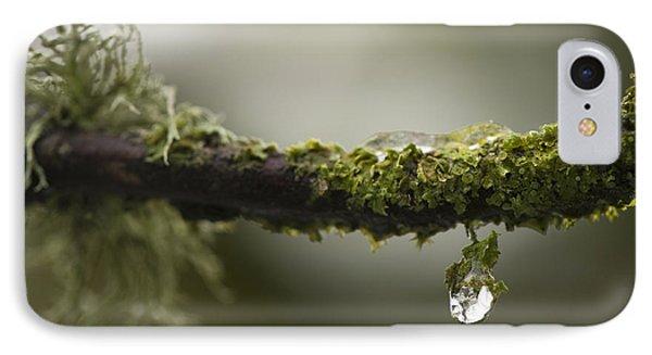 Frozen Droplet Phone Case by Anne Gilbert