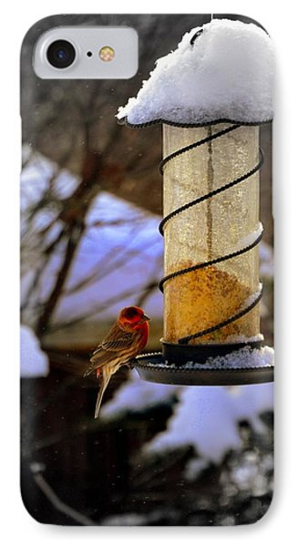 Frozen Feeder And Disappointment IPhone Case by Zafer Gurel
