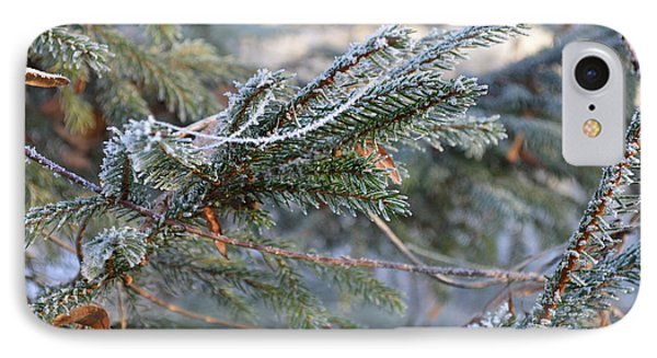 IPhone Case featuring the photograph Frozen Fir Branch  by Felicia Tica