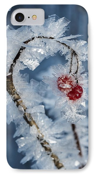 Frozen Food IPhone Case by Ted Raynor