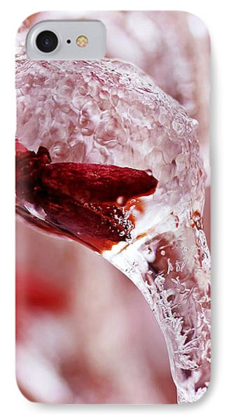 IPhone Case featuring the photograph Frozen Jewel  by Debbie Oppermann