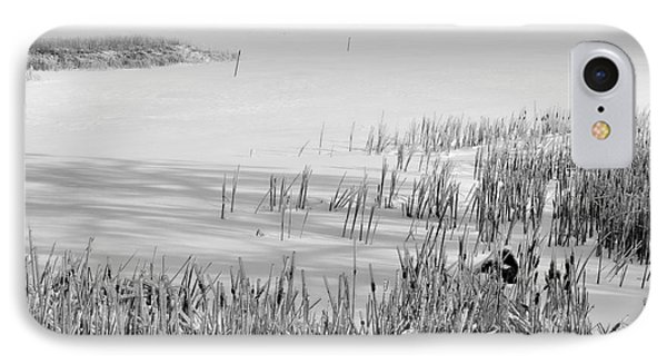 Frozen Lake And Ice Coated Bullrushes IPhone Case by Louise Heusinkveld