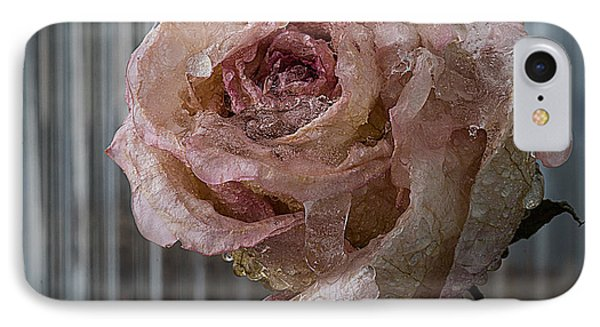 IPhone Case featuring the photograph Frozen Rose 2 by Vladimir Kholostykh