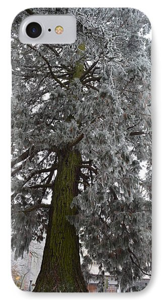 IPhone Case featuring the photograph Frozen Tree 2 by Felicia Tica
