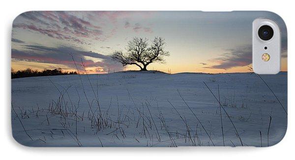 Frozen Tree Of Wisdom IPhone Case by Aaron J Groen