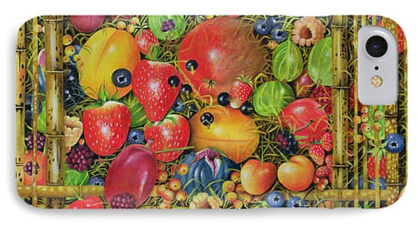 Fruit In Bamboo Box Phone Case by EB Watts