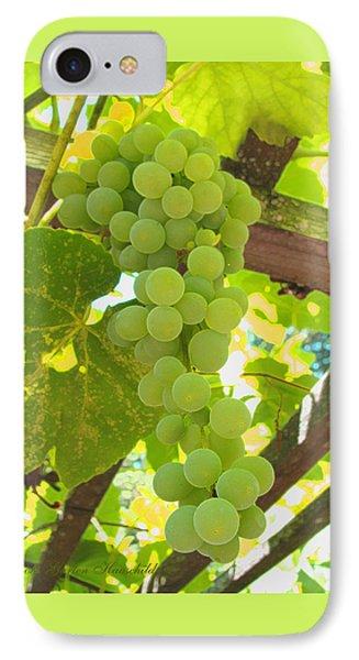 Fruit Of The Vine - Garden Art For The Kitchen IPhone Case by Brooks Garten Hauschild