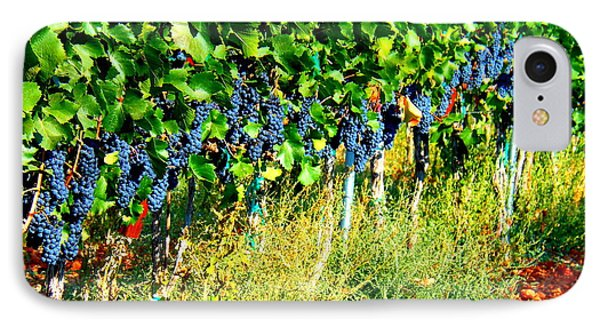 Fruit Of The Vine Phone Case by Kay Gilley
