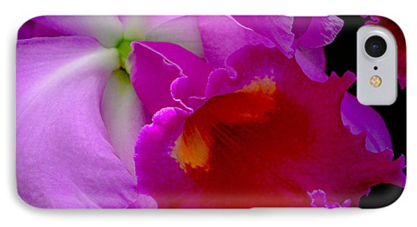Fuchsia Cattleya Orchid Squared IPhone Case