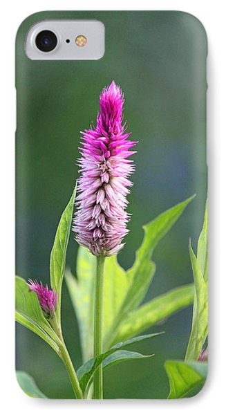 Fuchsia Spike Phone Case by Suzanne Gaff