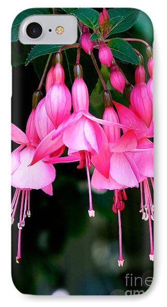 IPhone Case featuring the photograph Fuchsia  by Vinnie Oakes