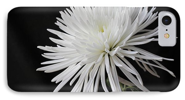 Fuji Mum IPhone Case by Bonnie Willis