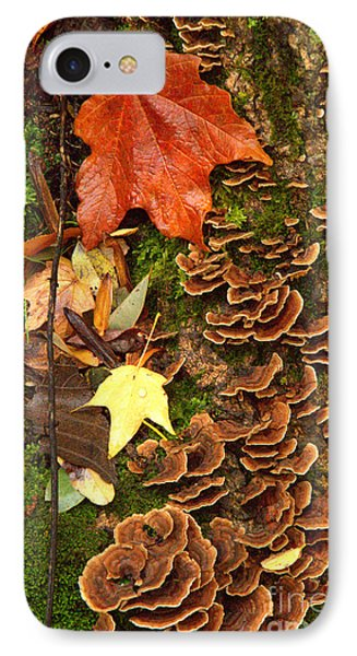 IPhone Case featuring the photograph Fungi by Jim McCain