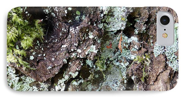 IPhone Case featuring the photograph Fungus Bark by Laurie Tsemak