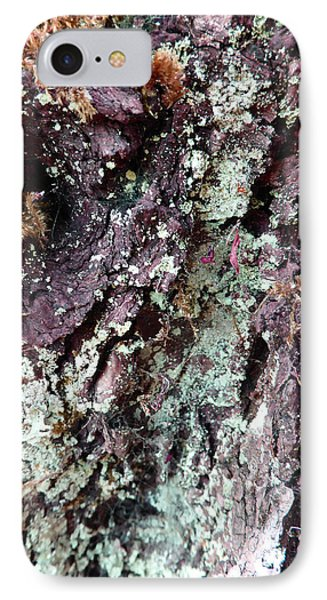 IPhone Case featuring the photograph Fungus Bark Purple by Laurie Tsemak