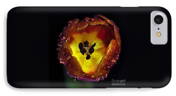 Furnace In A Tulip 2 Phone Case by Kaye Menner