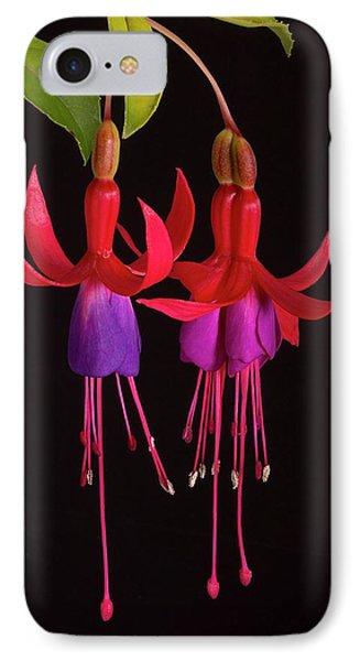 Fused Fuchsia Flower IPhone Case