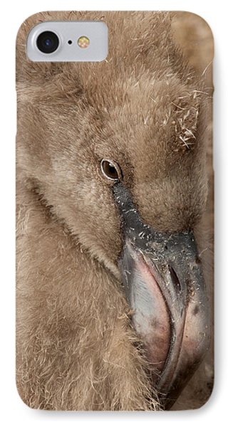 Fuzzy Flamingo Baby IPhone Case