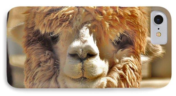 Fuzzy Wuzzy Alpaca IPhone Case by Helen Carson