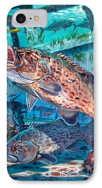 Gag Grouper In0030 IPhone Case by Carey Chen