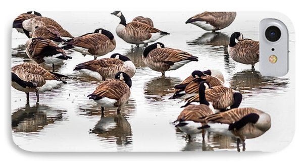 IPhone Case featuring the photograph Gaggle Of Geese by Brian Stevens
