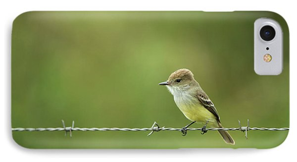 Galapagos Flycatcher (myiarchus IPhone 7 Case