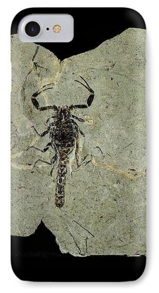 Gallio Scorpion Fossil IPhone Case by Gilles Mermet
