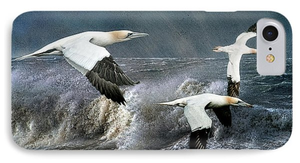 IPhone Case featuring the photograph Gannets Skimming The Waves by Brian Tarr