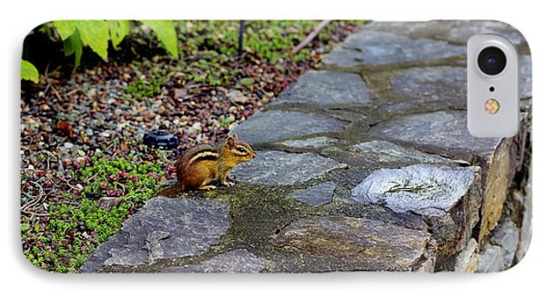 Garden Chipmunk IPhone Case