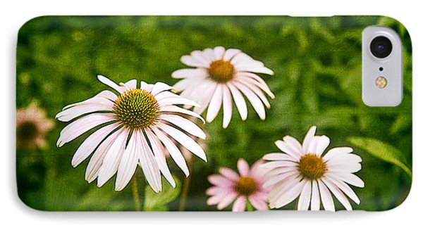Garden Dasies IPhone Case by Tom Mc Nemar