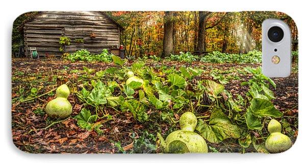 Garden Gourds IPhone Case by Debra and Dave Vanderlaan